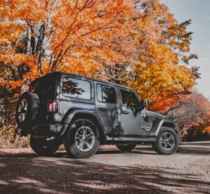 Can You Take a Stock Jeep Off-Road? | Off Roading Pal